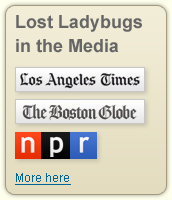 Lost Ladybugs in the Media